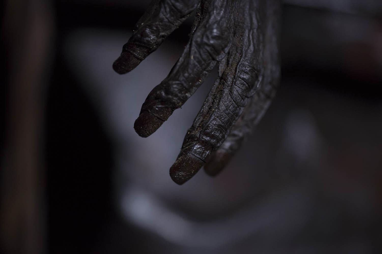 150813_07920Gemtasu's Hand, Papua Neuguinea.Gemtasu's hand, Papua New Guinea.