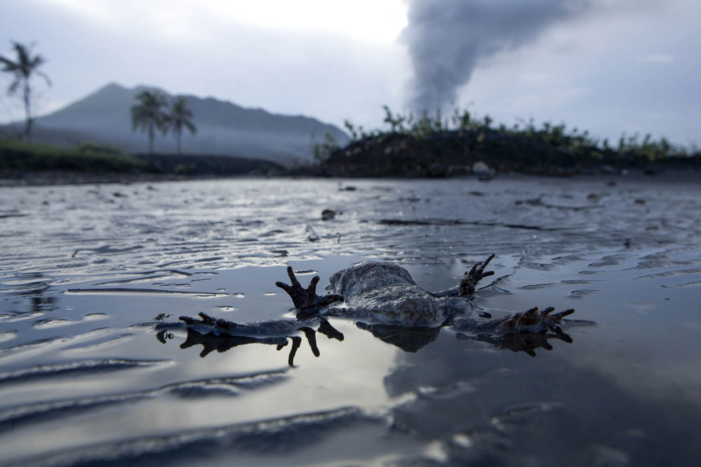 PNG08_1005_3685Saurer Regen, Tavurvur Vulkan, Papua Neuguinea.Acid rain, Tavurvur Volcano, Papua New Guinea.